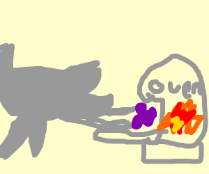 Rhinoceros baking Grapefruit