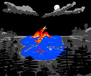 phoenix-swan in the lake at night