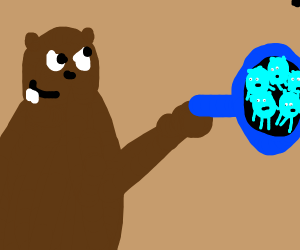 """The """"you-know-what"""" bear"""