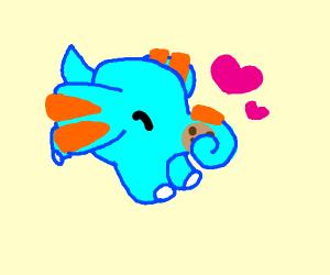 Elephant loves cookies