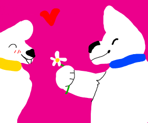 sven, a dog, gives his dog-bf a flower