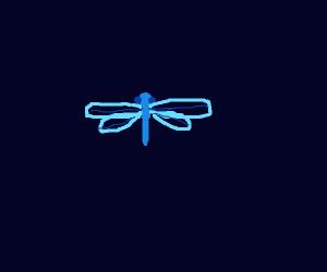 A blue dragon fly