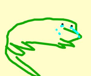 sad lizard
