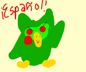 Murderous Duolingo Bird