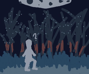 man is lost in the woods at nighttime