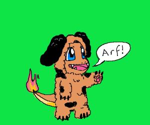 Charmander disquised as dog