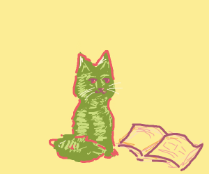 Cute water melon cat reads a book
