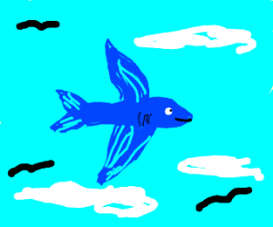 A literal flying fish
