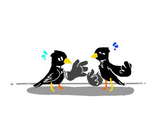 2 crow friends