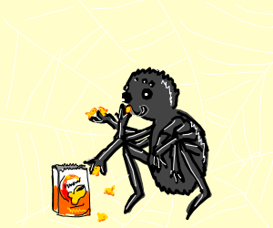 Spider eating goldfish :(