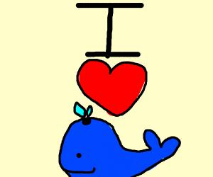 I love Whales