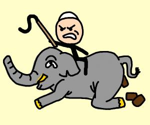Elephant pope