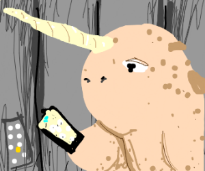 Narwhal looking at a phone in an elevator