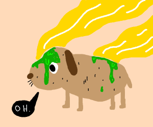 a dog that has smelly green goo on it