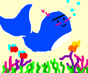 bluewhale with a unibrow blushing