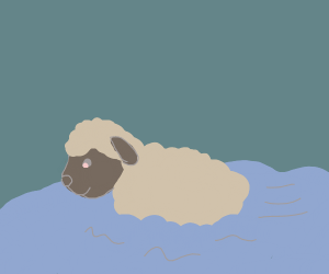 Sheep Swimming