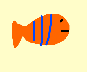 fish with blue and orange stripes