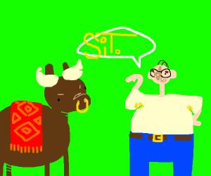 Man telling bull to sit