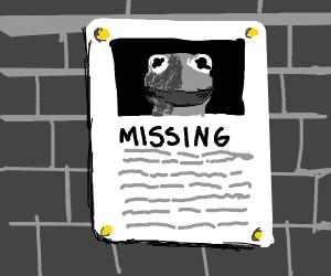 Missing Kermit Poster