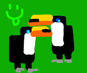 indigosquare like toucans