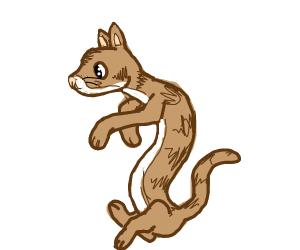flowey cat