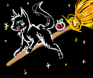 Black Halloween cat rides broom with a peach