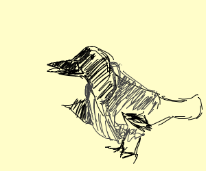 Crow wearing a Coat