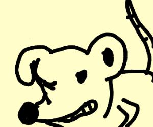 deformed rat