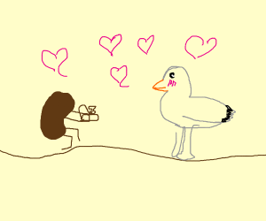 Coffee bean proposing to a seagull