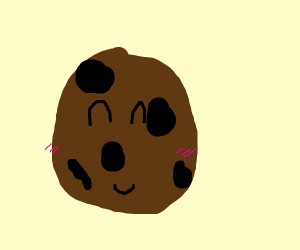 smileling cookie