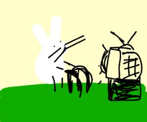 Old Rabbit