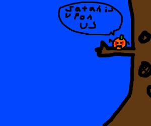 Scared orange sits on a tree