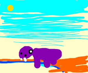 Posh hippo