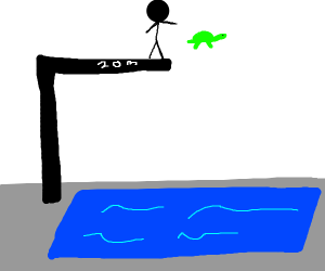 throwing a turtle 20m into a pool