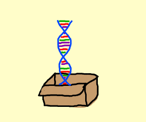 dna from a box