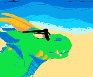 Dragon at the beach