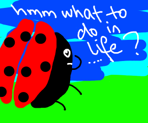 A bug thinking about it's life choices