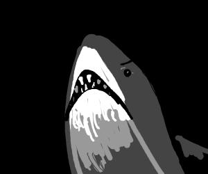 Derpy shark tries hard