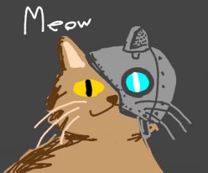 Blue cyborg cat