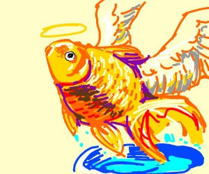 Goldfish sprout wings and fly out of tank
