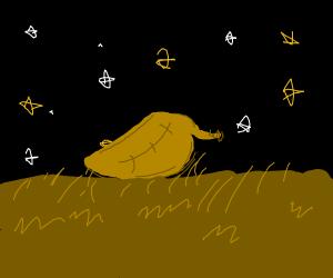 Fallen leaf in a night sky