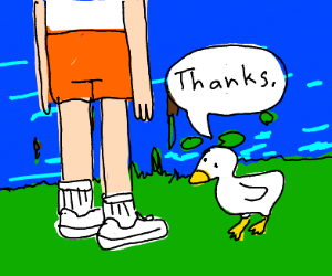 duck say thanks to a person