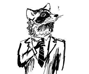 confused but dapper raccoon