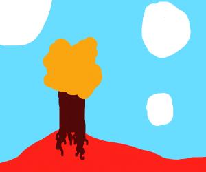 a landscape so crisp it looks like a logo