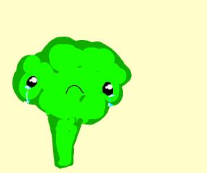 broccoli sad about broccoli