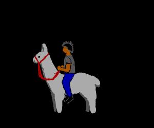 man riding his llama through the darkness