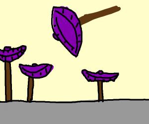 Floating, bowl-shaped, purple umbrella