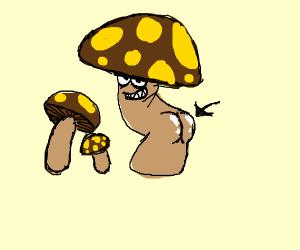 Mushroom Butt