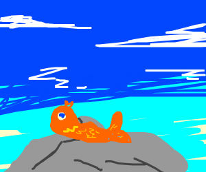 Goldfish over a stone