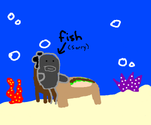 Fish eating a Burrito
